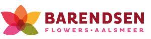 barendsen logo