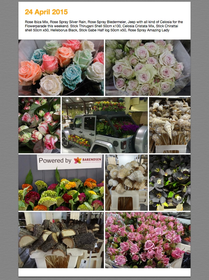 Foto's van 22 apr 2015 (1)