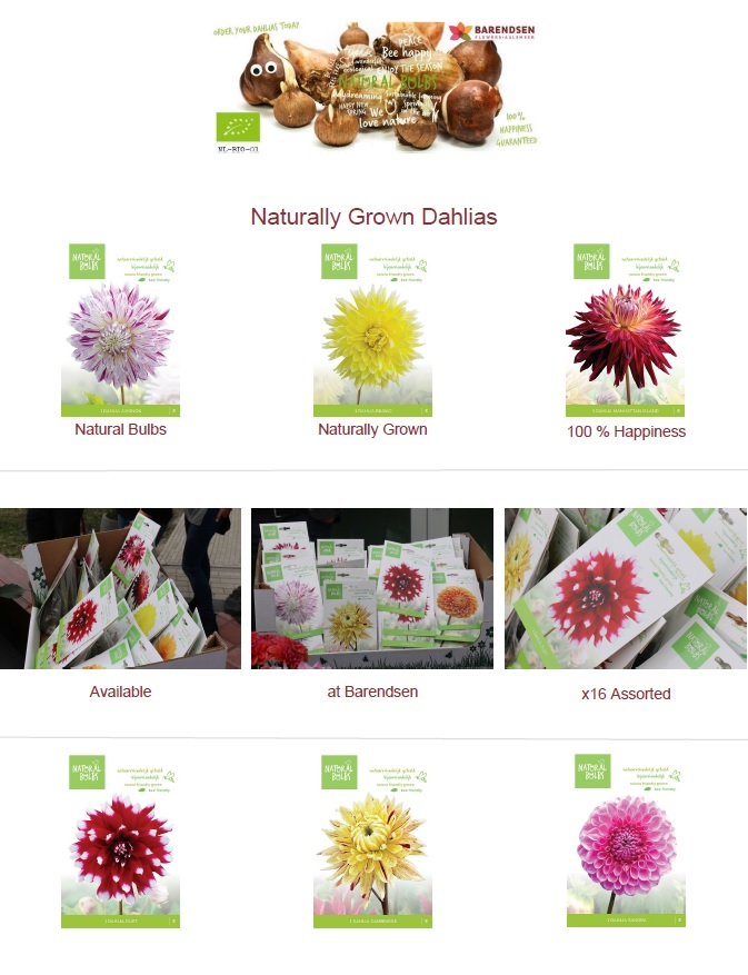 Nature Bulbs